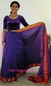 Sari adult pleated
